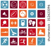 vector set of sport icons | Shutterstock .eps vector #312623396