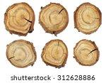 Wood Slice Texture  Set Of...