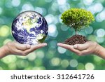 exchange planet and tree in...   Shutterstock . vector #312641726