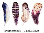 hand drawn watercolor vibrant... | Shutterstock . vector #312683825