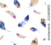 watercolor birds feathers... | Shutterstock . vector #312683852