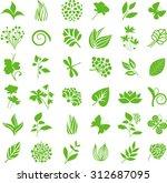 natural design elements | Shutterstock .eps vector #312687095