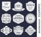 premium logos set. best choice... | Shutterstock .eps vector #312690992