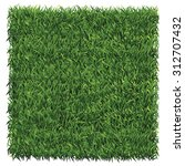Square Of Dark Green Grass. A...