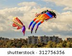 Huge Colorful Kite Squid And...
