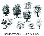 set of trees hand drawn with... | Shutterstock . vector #312771422