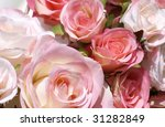 pink cotton roses - stock photo