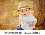 small charming and very... | Shutterstock . vector #312920858