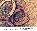 rusty horseshoes on a straw... | Shutterstock . vector #313027526