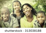 family togetherness unity...   Shutterstock . vector #313038188