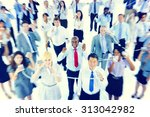 large group of business people... | Shutterstock . vector #313042982