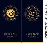 monogram design elements ...   Shutterstock .eps vector #313068416