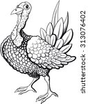 funny turkey in black and white ... | Shutterstock .eps vector #313076402