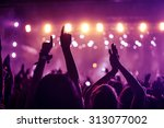 a crowd of people celebrating...   Shutterstock . vector #313077002