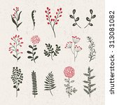 plants and flowers vintage... | Shutterstock .eps vector #313081082