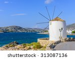 traditional greek architecture  ... | Shutterstock . vector #313087136