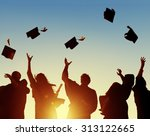 celebration education... | Shutterstock . vector #313122665