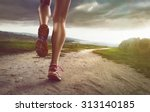 female jogger on coastal path | Shutterstock . vector #313140185
