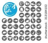 dinosaurs icons set....   Shutterstock .eps vector #313184102