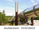 Small photo of Alaskan Pipeline