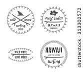 surfing emblem set with... | Shutterstock . vector #313302572