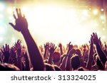 a crowd of people celebrating...   Shutterstock . vector #313324025