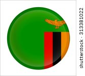 zambia flag glossy button  ...   Shutterstock .eps vector #313381022