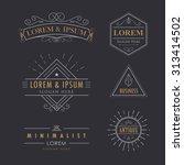 logo set vintage vector... | Shutterstock .eps vector #313414502