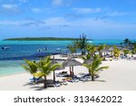beautiful tropical paradise... | Shutterstock . vector #313462022