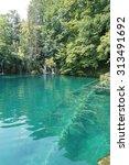 plitvice  croatia | Shutterstock . vector #313491692