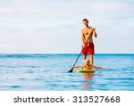 father and son stand up... | Shutterstock . vector #313527668