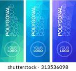 vertical  polygonal banners | Shutterstock .eps vector #313536098