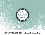 vector hipster grunge texture.... | Shutterstock .eps vector #313566152