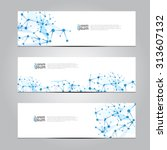 vector design banner network... | Shutterstock .eps vector #313607132