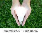 Small photo of LED bulb with lighting in the human hand with green grass background
