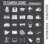 camera icon  | Shutterstock .eps vector #313629242