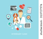 veterinary banner  background ... | Shutterstock .eps vector #313727576
