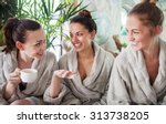 three young happy women... | Shutterstock . vector #313738205
