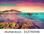 colorful spring sunset from the ... | Shutterstock . vector #313750448