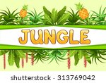 stylized plants  leaves and... | Shutterstock .eps vector #313769042