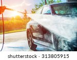 summer car washing. cleaning... | Shutterstock . vector #313805915