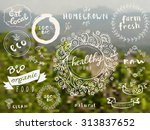 set of 100  bio  organic  eco ... | Shutterstock .eps vector #313837652