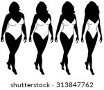 four stages of abstract woman... | Shutterstock . vector #313847762