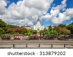 st. louis cathedral in the... | Shutterstock . vector #313879202