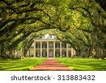 oak alley plantation  louisiana | Shutterstock . vector #313883432