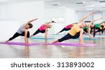 four girls practicing yoga ... | Shutterstock . vector #313893002
