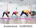 four girls practicing yoga ... | Shutterstock . vector #313893032