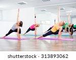four girls practicing yoga ... | Shutterstock . vector #313893062