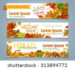 vector set of autumn banners.... | Shutterstock .eps vector #313894772