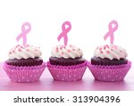 host an event for pink ribbon... | Shutterstock . vector #313904396